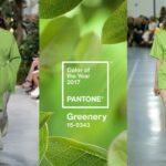 A levélzöld lett 2017 hivatalos Pantone színe