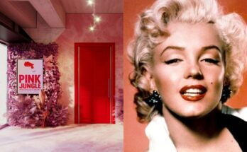 Pink Jungle: 1950s Makeup in America - online exhibition - uncategorized-en, beauty-en -