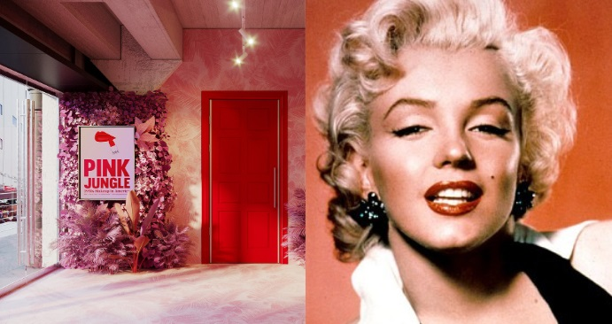 Pink Jungle: 1950s Makeup in America - online exhibition - uncategorized-en, beauty-en -