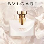Új BVLGARI SPLENDIDA parfüm igényeseknek: PATCHOULI TENTATION